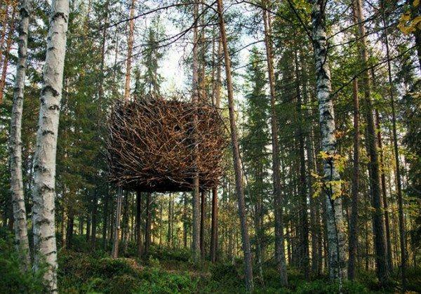Tree Hotel Sweden Birds Nest