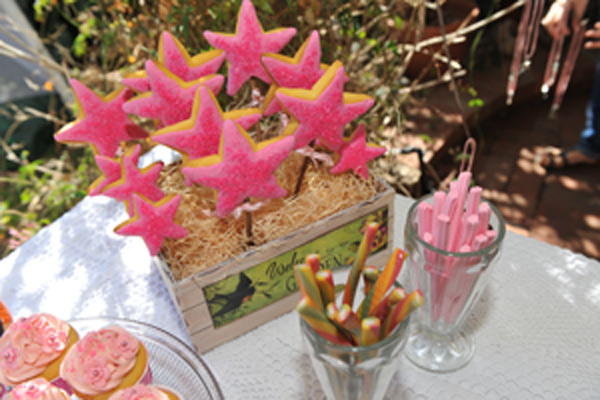 fairy wand cookies biscuits