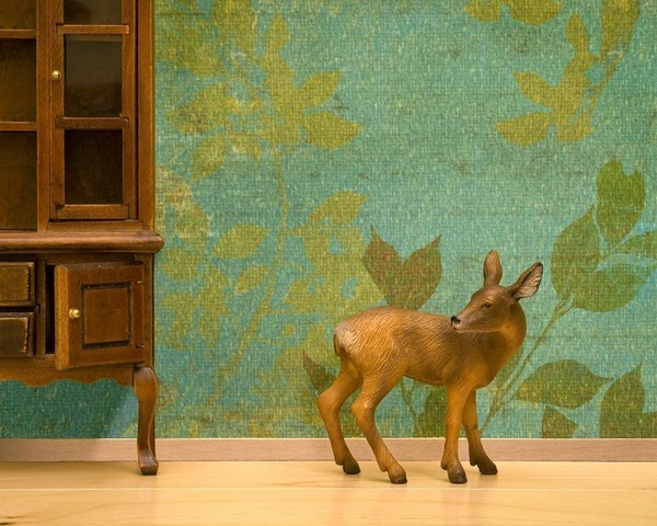 wild life prints 05 Decorate your natural habitat with Wild Life Prints