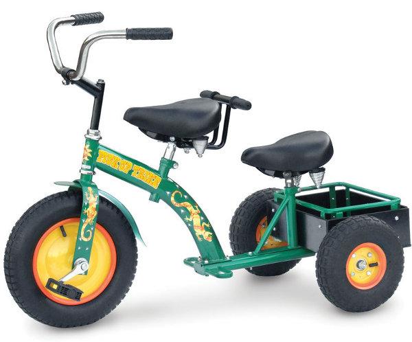 Sibling Tricycle