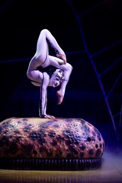Cirque Du Soleil Presents Ovo
