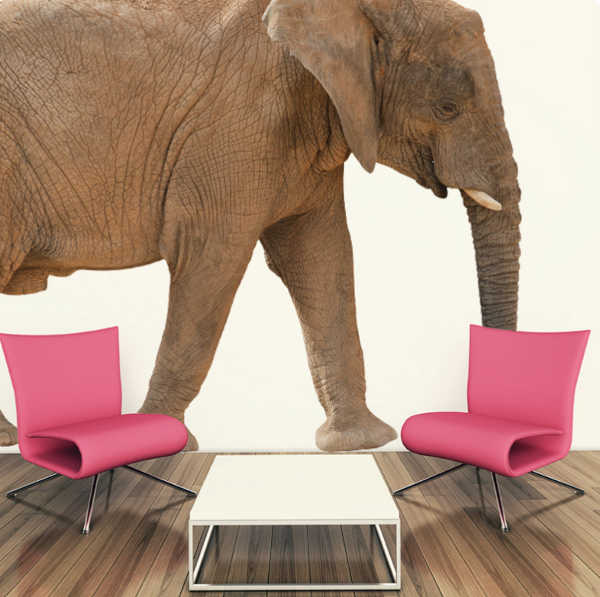 The Range Includes Giraffes, Elephants, Flamingos, Lions And Meerkats. The  Largest Wall Sticker In The Range Is The Elephant. In The Large Size He  Stands At ... Part 79