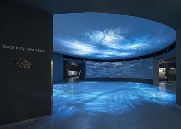 The-Blue-Planet-Aquarium-14