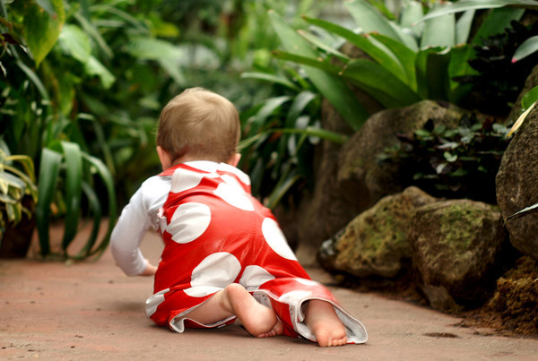 Overcrawls 2 web Overcrawls   letting little ones explore the great outdoors in comfort