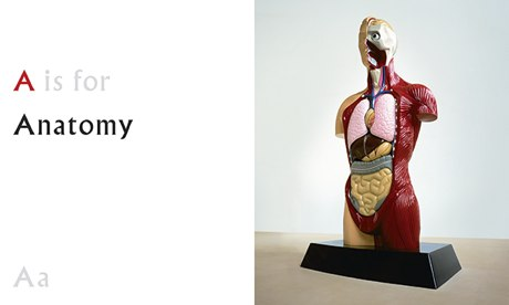 A is for Anatomy, from ABC by Damien Hirst