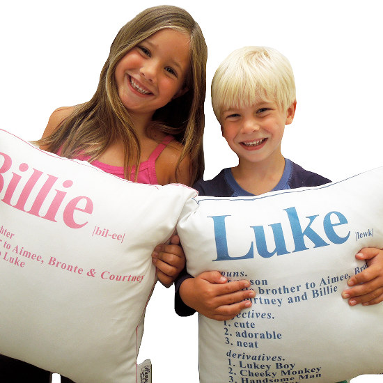 dictionary pillows unique gift guide