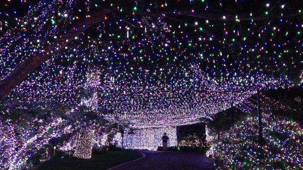 Christmas-lights-Australia