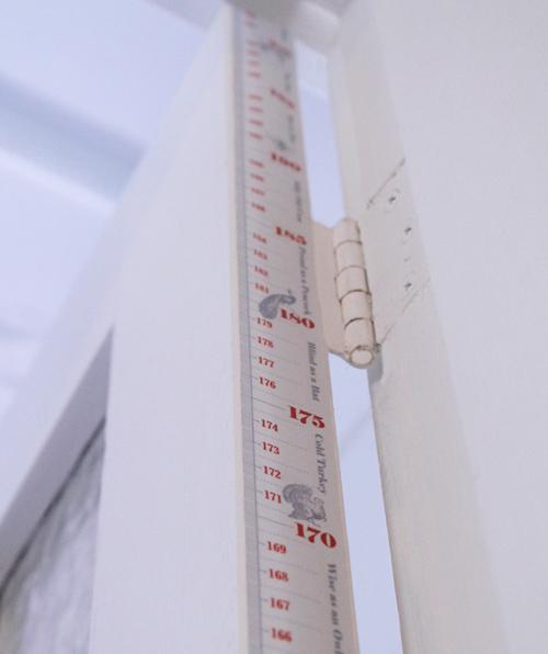 foolhouse-door-jam height chart
