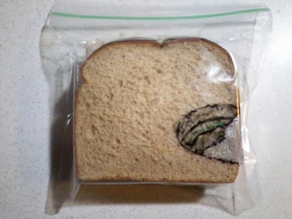 sandwich-bag-art-4