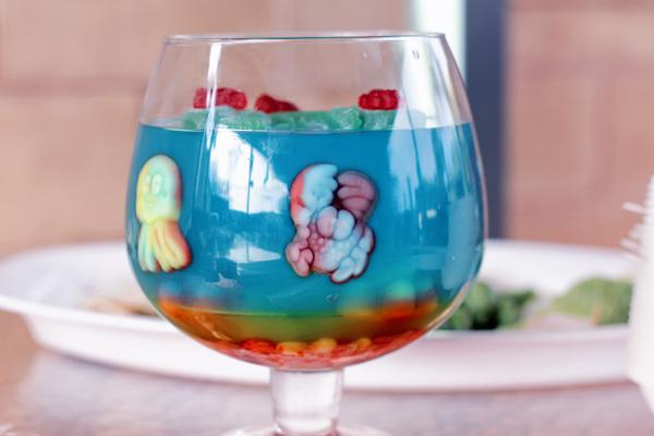 sea critter jelly