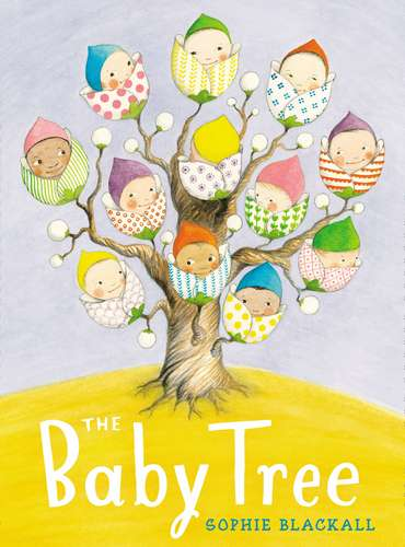 the baby tree by sophie blackall 1 Where do babies come from? The baby tree, of course!