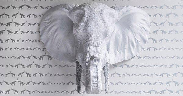 sissy-and-marley-elephant2