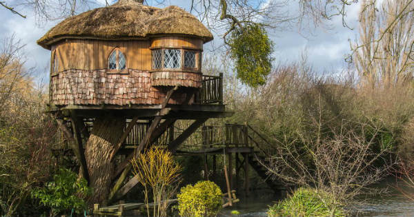 treehouse7 Incredible treehouses from around the world