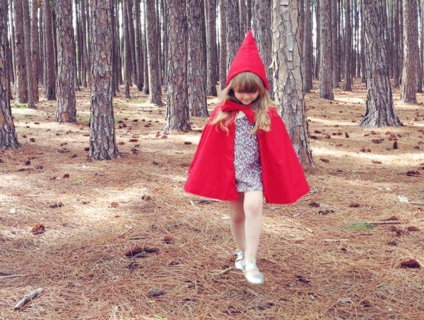 Sparrow Blue Design Red Riding Hood Cape