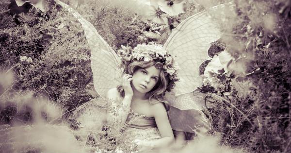 21Alice_Fairy fb