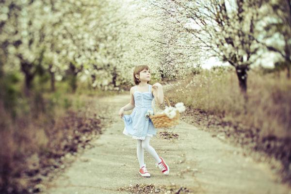 Alice_Dorothy