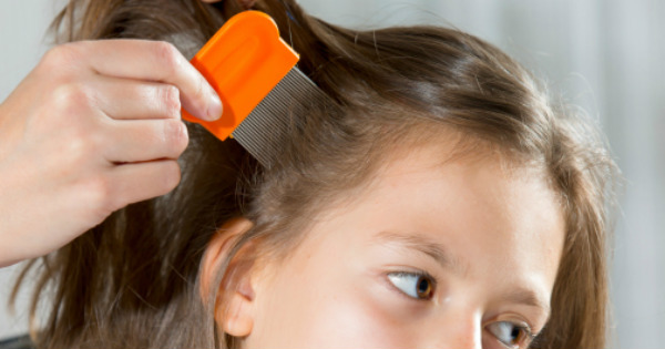 combing a girl's hair with a head lice comb