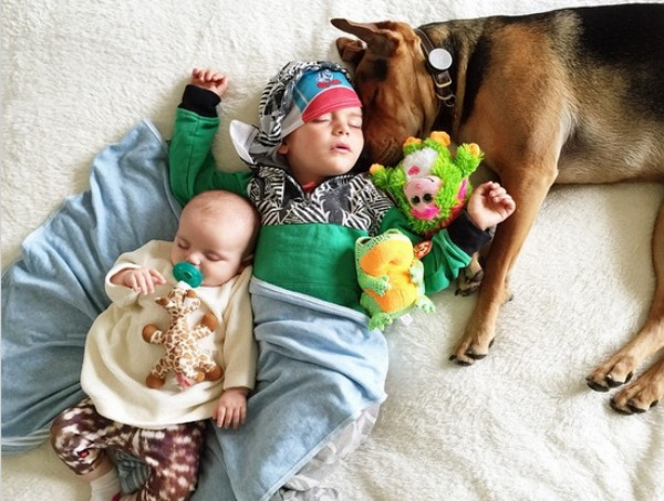Famous Puppy And Toddler Have A New Napping Friend - Toddler naps with puppy