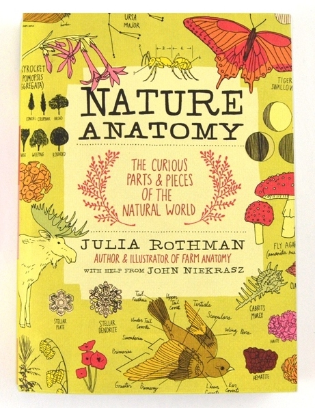 nature-anatomy-julia-rothman-1