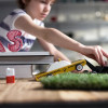 Candylab Toys are back, now with even more awesome wood cars