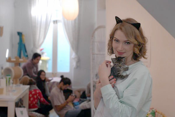 catcafe5