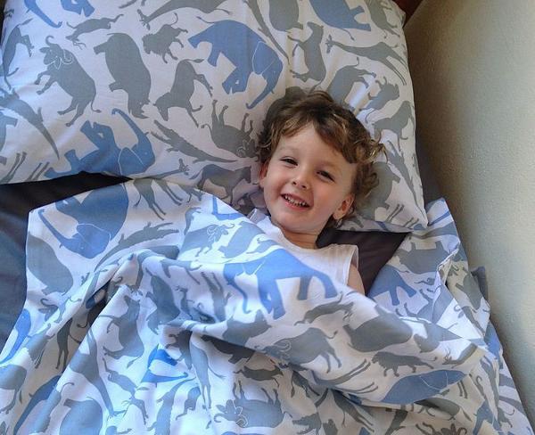 Safari Single Bed Sheets