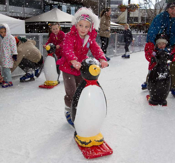 Canberra Skate in the Park