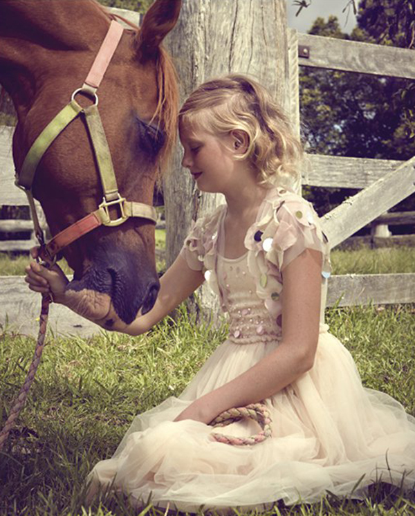 Tutu du Monde Tulle Dress Horse 2