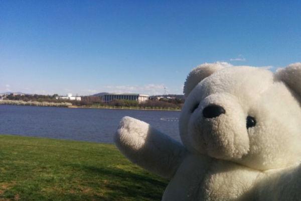 teddyadventure1