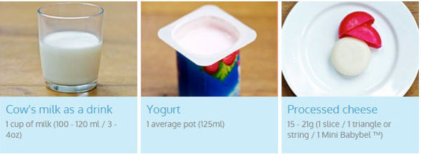 portions sizes of dairy foods for toddlers