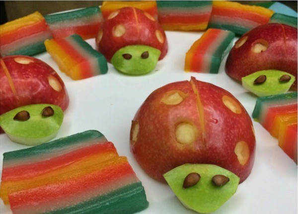 animal food creations 12