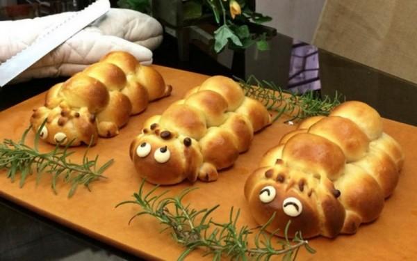 animal food creations 5