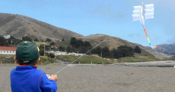 boy flying haptic kite