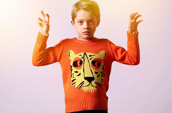 Littlehorn boy tiger jumper