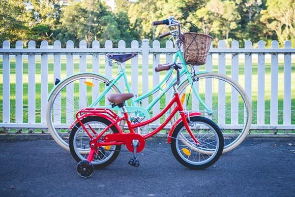 Papillionaire Mandi's bikes