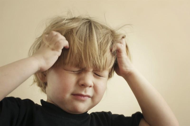 stock sl head lice nits
