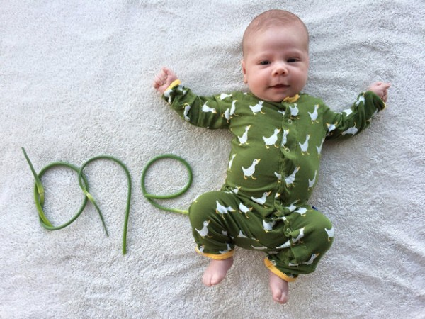 baby announcment card veg1