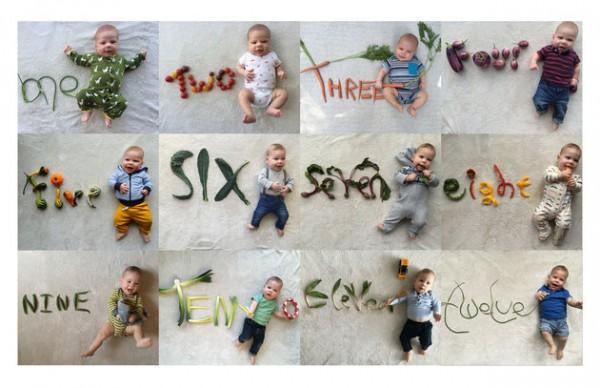 baby announcment cards veggies