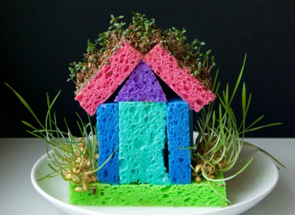 Entertain-Kids-sprout-house-project