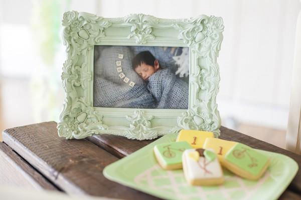 Joshuas first birthday baby photo
