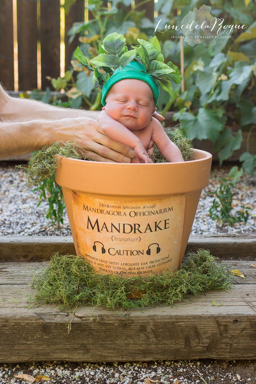 harry potter baby1