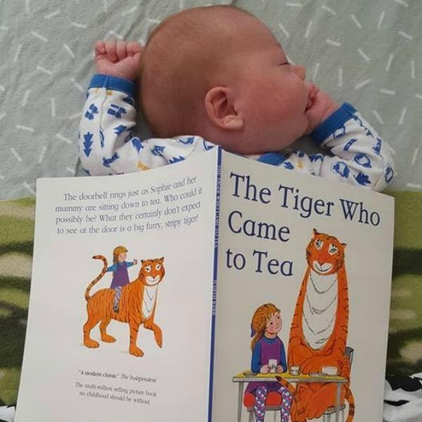 tiger tea 1