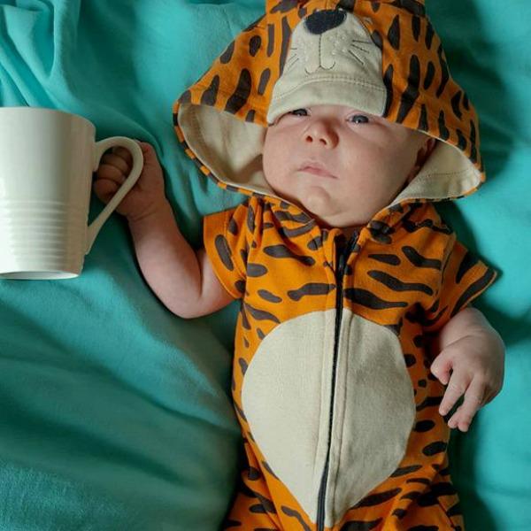 tiger tea 2