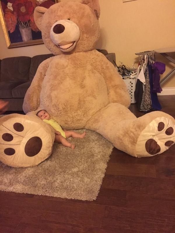 happy-baby-bear