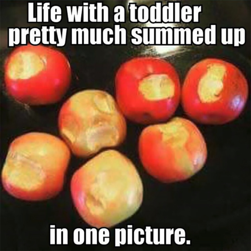 toddler and apples meme