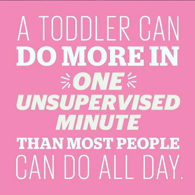 Toddlers need supervision meme