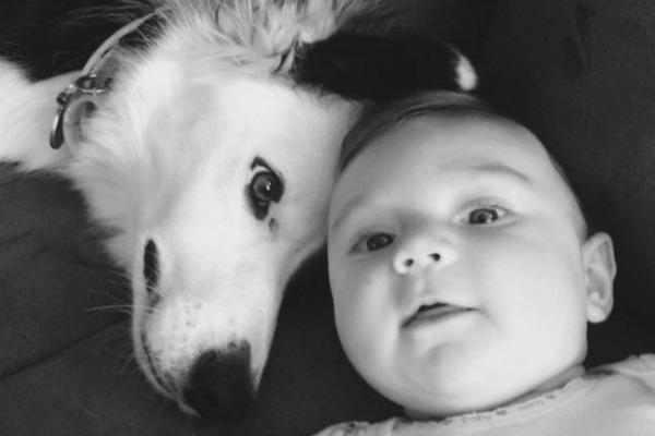 cute-pet-baby-9