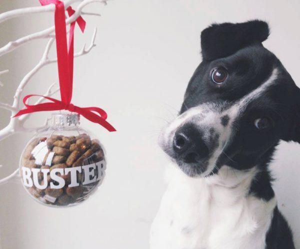 Pet's Christmas bauble