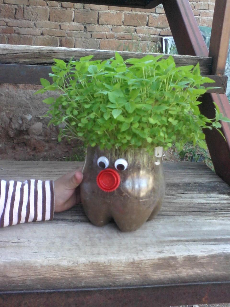 Plant head gift