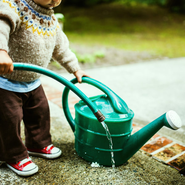 Toddler watering garden
